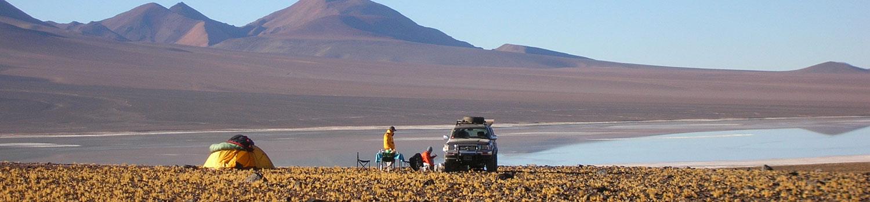 Mount Pissis cortaderas Atacama