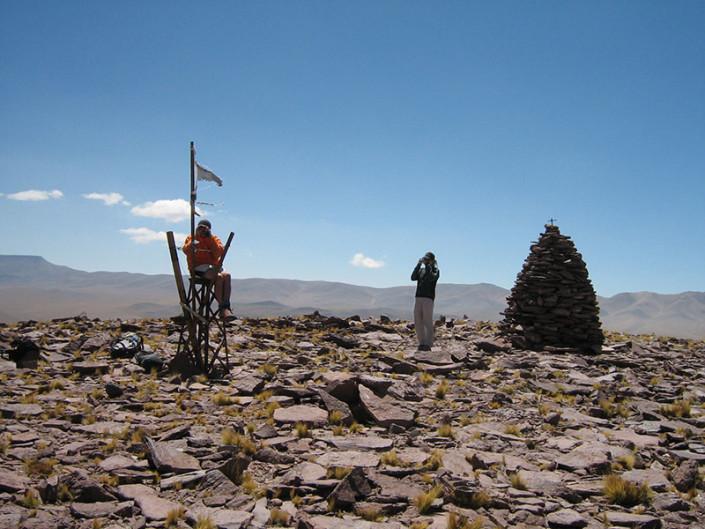 Falso Morocho Atacama